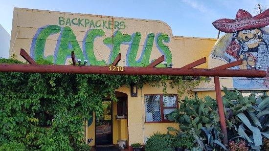 Cactus Jacks Backpackers: 20180121_073946_large.jpg