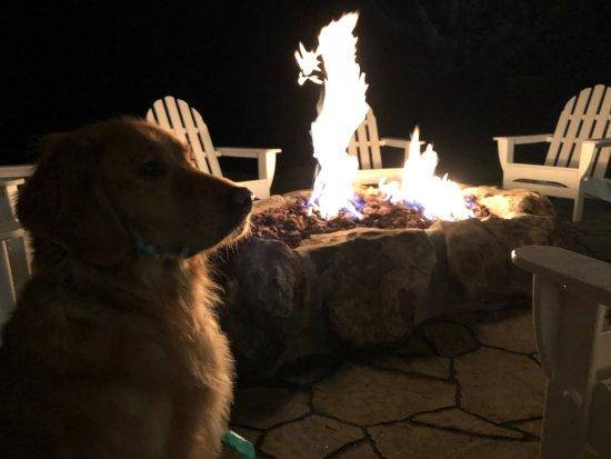 Gleneden Beach, Oregón: Firepit