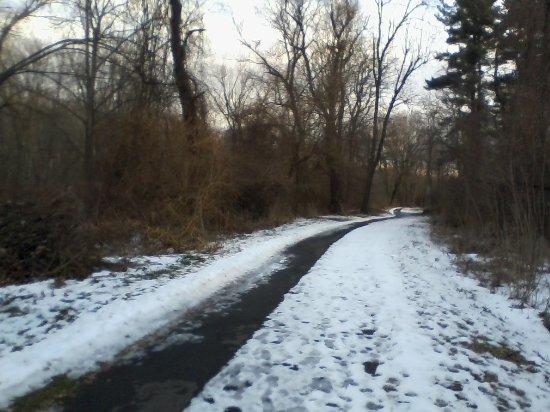 Γουίντσορ, Κονέκτικατ: Paved trail through woods