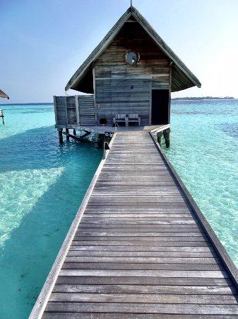 Como cocoa island updated 2018 prices resort reviews maldives como cocoa island updated 2018 prices resort reviews maldives tripadvisor sciox Gallery