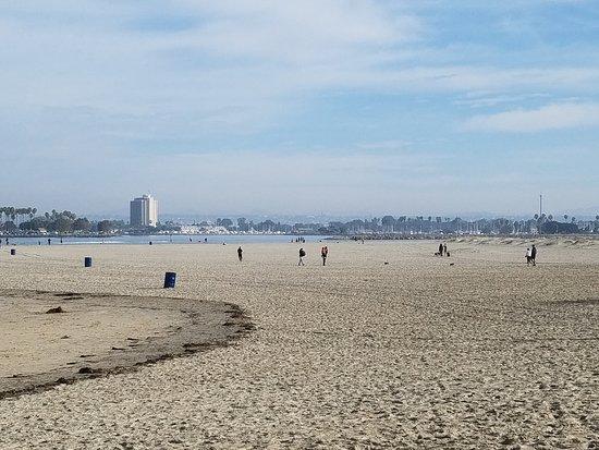 Ocean Beach Dog Park Area