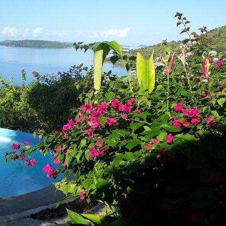 AL FARO Cosmio Hotel Palawan : IMG_20180111_093841_970_large.jpg