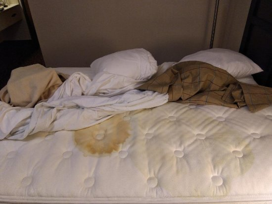 Baymont Inn & Suites Chicago/Calumet City: Blood and Urine spots on mattress, Dirty Sheets and Blankets.
