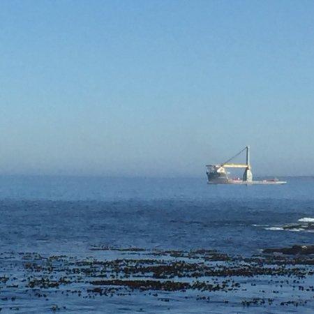 Bantry Bay, South Africa: photo2.jpg