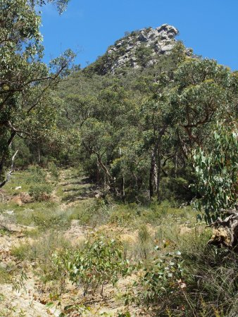 Dunkeld, Australia: view of nearby mountain - 7% of the way