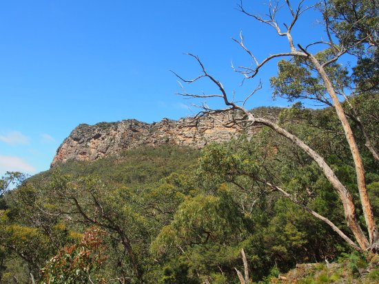 Dunkeld, Australien: this is NOT the top. you'd be around 20% of the way when you see this view