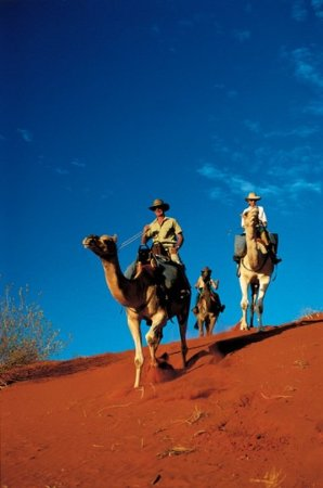 Outback Pioneer Hotel & Lodge, Ayers Rock Resort: Other