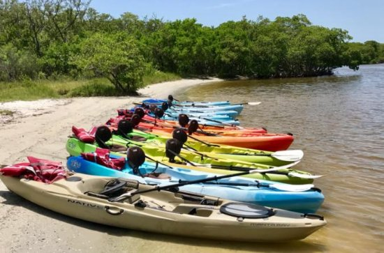 3 Hour Kayak Rental