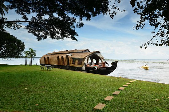 Splendour of Backwaters
