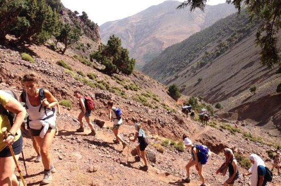 High Atlas Mountains Full Day Trek