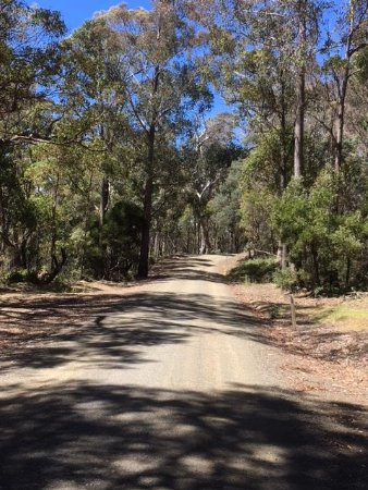 Ben Lomond National Park, Australia: Road to Ben Lomond