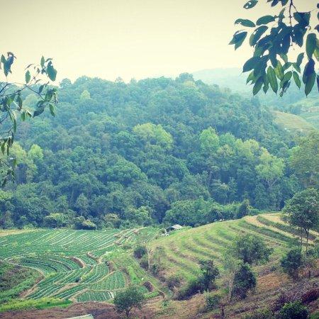 Wonderful Eco Tours Chiang Mai