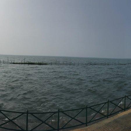 Backwater Ripples: photo1.jpg