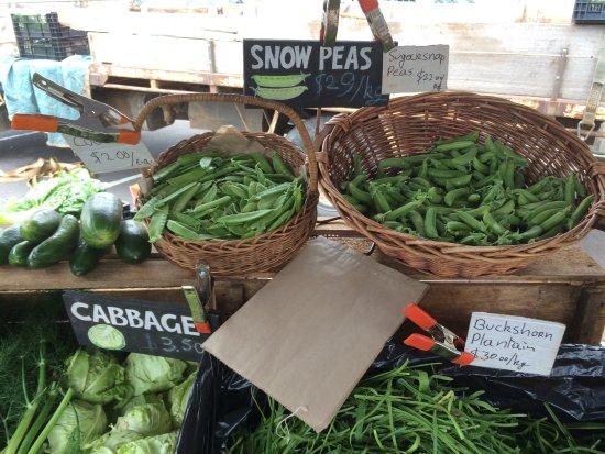朗塞斯顿社区农贸市场照片
