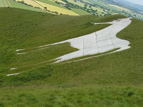 The Westbury White Horse up close.