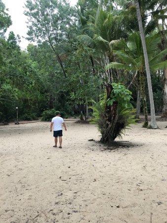 Kewarra Beach, Australia: photo5.jpg