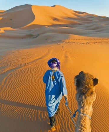 Original Morocco Tours: Sahara yoga's