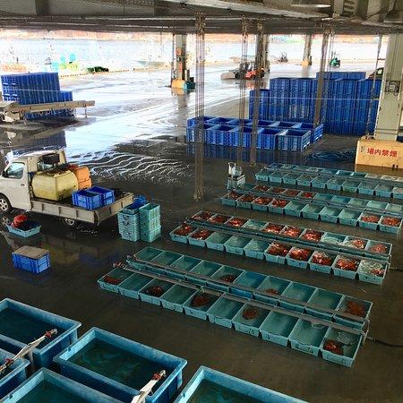 Kesennuma Fish Market: photo2.jpg