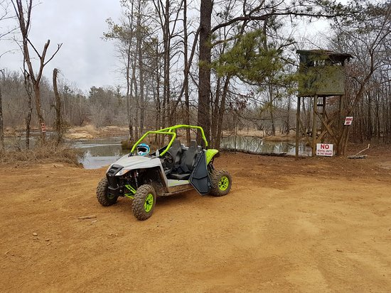 Union Point, GA: Wildcat by the swamp