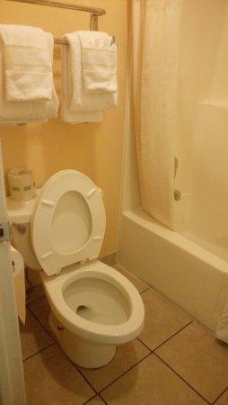 Econo Lodge: Les toilettes qui fuient