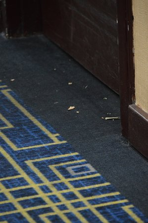 Riverwalk Plaza Hotel & Suites: After being cleaned