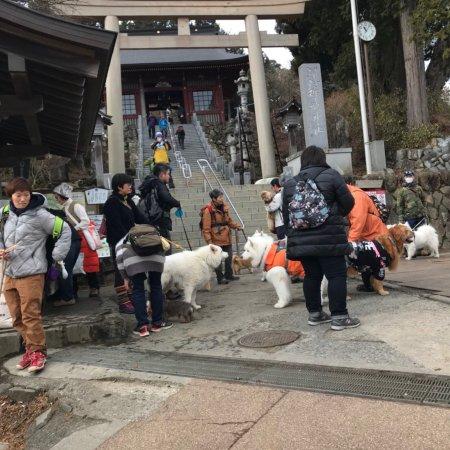 Mt. Mitake: photo1.jpg