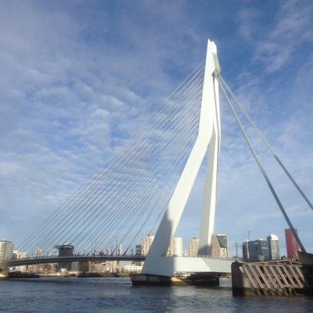 Erasmus Bridge (Rotterdam) - All You Need to Know Before ...