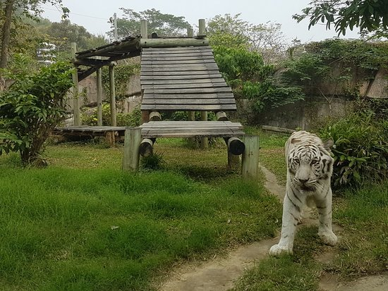 Shoushan Zoo
