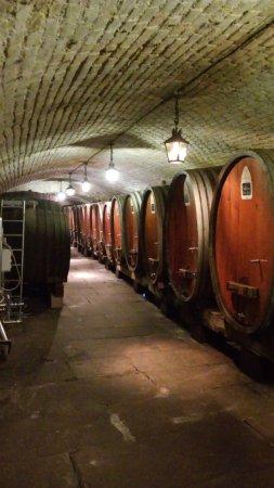 Cave historique des hospices civils de Strasbourg : interior da adega