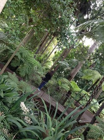 Royal Botanic Gardens Melbourne : inside the park