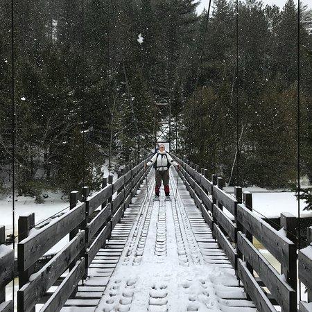 Parc regional de la Foret Ouareau: Pont suspendu