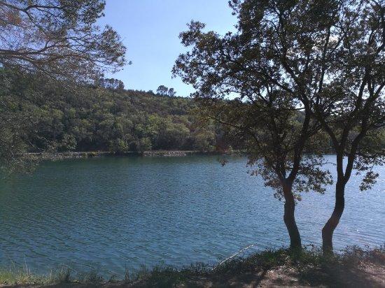 Lac de Carcès Bild