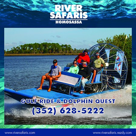 Crystal River Manatee Tour Reviews