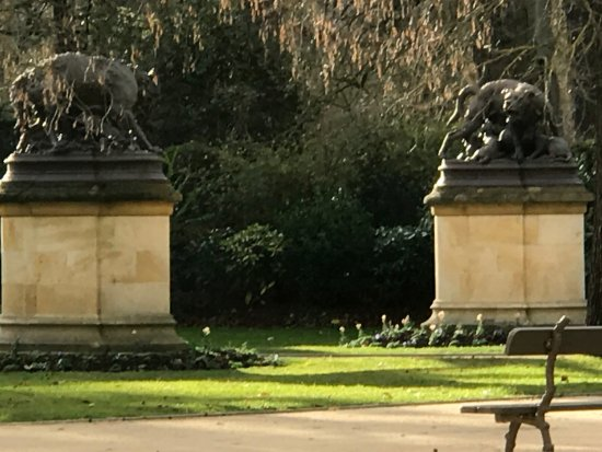 Jardin - Photo de Jardin du Grand Rond, Toulouse - TripAdvisor