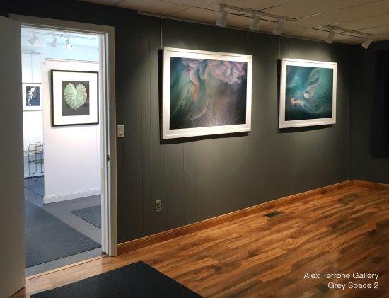 Cutchogue, Estado de Nueva York: Studio visits from January 21 through March 18: Works by Alex Ferrone