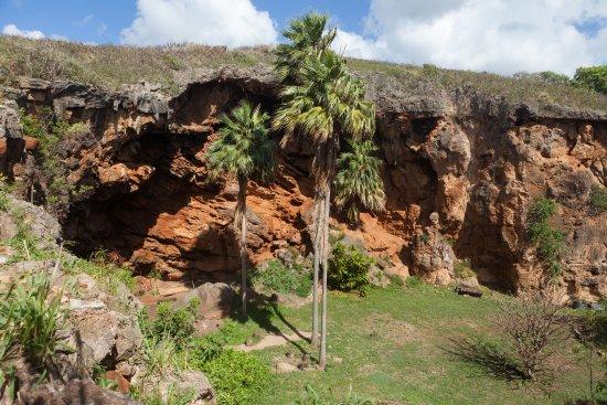 Kalaheo, HI: Amazing history