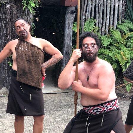 Maorilandsbyen Tamaki-billede