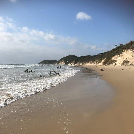 Chintsa, Afrique du Sud : photo3.jpg