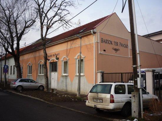 Bartok Ter Panzio