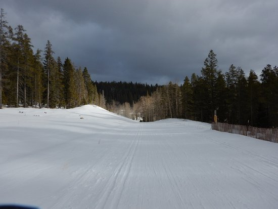 Allison Lake Cross Country Ski Trails