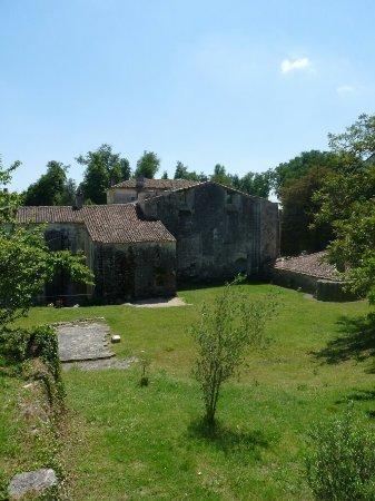 Saint Bris des Bois, Francia: P1090144_large.jpg