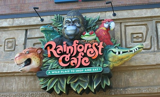 Rainforest Cafe Picture