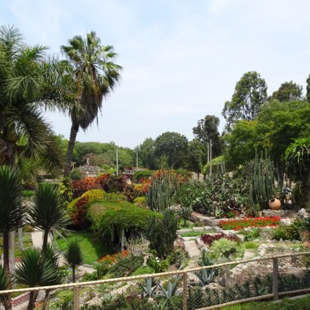 Parque de las Leyendas (Zoo): photo8.jpg