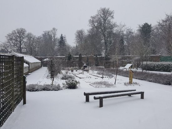 Stockwood Discovery Centre: 20180121_123306_large.jpg
