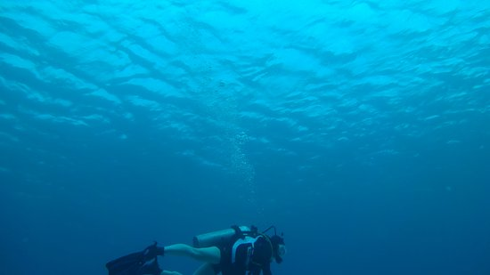 Eden Rock Diving Center: Beautiful water