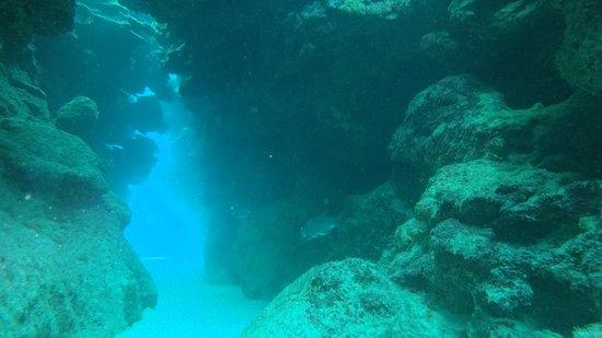 Eden Rock Diving Center: Nice swim through and hiding spot for creatures