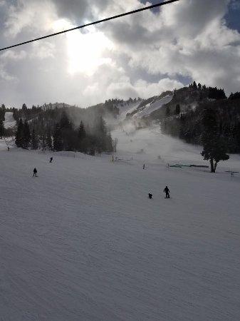 Snowbasin Resort : 20180121_130717_large.jpg