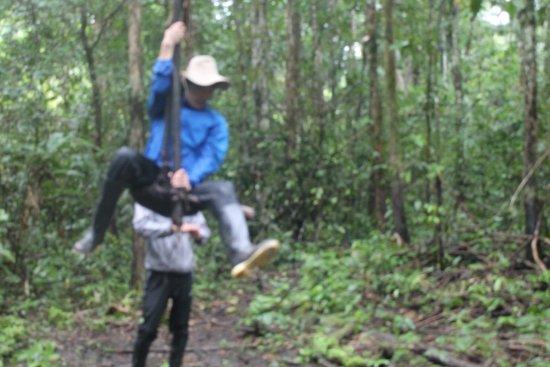 Loreto-regio, Peru: saltando en liana de tarzan