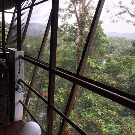 Boca Tapada, Costa Rica: photo5.jpg