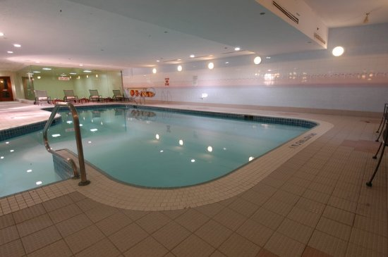 Novotel toronto mississauga center updated 2018 hotel for Pool show mississauga